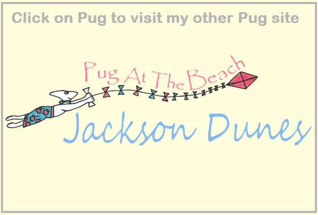 Pug Lady website banner