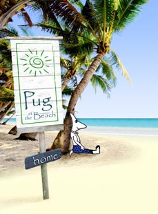 Pug At The Beach ~ Books and more